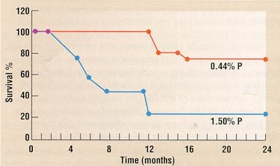 Свой Доктор. Статья для Владельцев. Как кормить животных при патологии почек?